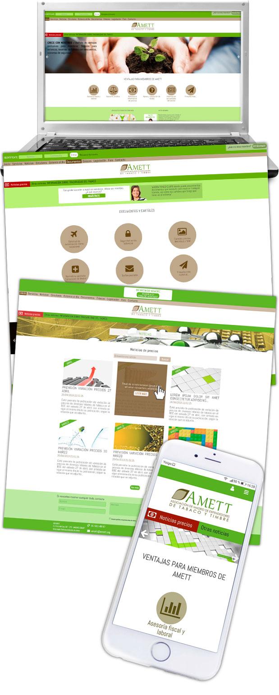Diseño web responsive Amett imagen lateral